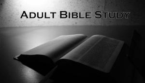 AdultStudy